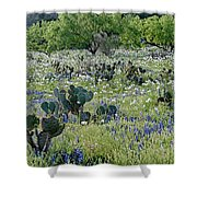 Cactus And Willow-wildflowers Of Texas Shower Curtain