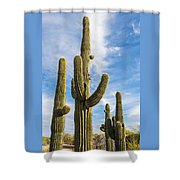 Cactus Arms Shower Curtain