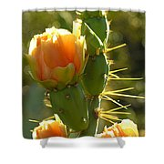 Cactus Buds Shower Curtain