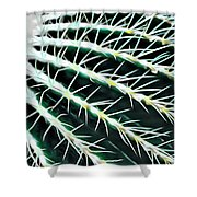 Cactus Detail Shower Curtain