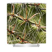 Cactus Diagonal Pattern Shower Curtain