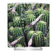 Cactus Drama Shower Curtain
