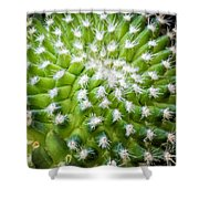 Cactus Feathers Shower Curtain