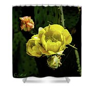 Cactus Flower 07-010 Shower Curtain