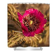Cactus Flower 1 Shower Curtain