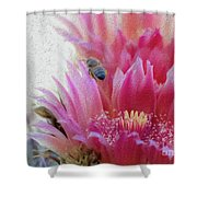 Cactus Flower And A Busy Bee Shower Curtain