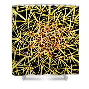 Cactus From Top Shower Curtain