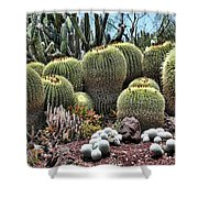 Cactus Galore  Shower Curtain