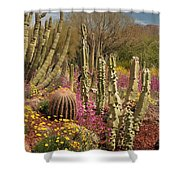 Cactus Garden II Shower Curtain