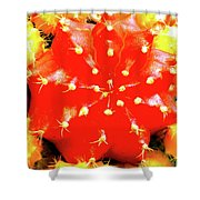 Cactus Graft Shower Curtain