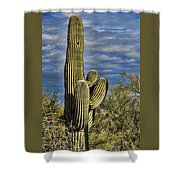 Cactus Home Shower Curtain