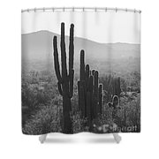 Cactus In Black And White Shower Curtain