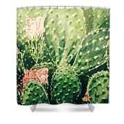 Cactus In Blossom  Shower Curtain