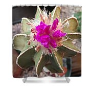 Cactus In Flower Shower Curtain