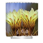 Cactus Life Shower Curtain