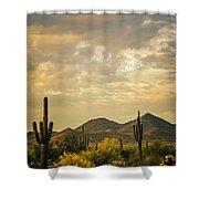 Cactus Morning Shower Curtain