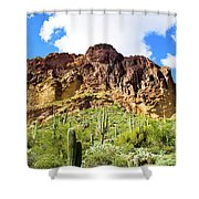 Cactus On The Mountainside Shower Curtain