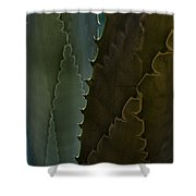 Cactus Outlined Shower Curtain