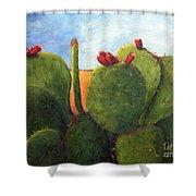 Cactus Pears Shower Curtain