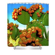 Cactus Pears Shower Curtain