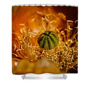 Cactus Pistil Shower Curtain