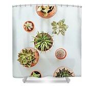 Cactus Pots Shower Curtain