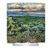 Cactus Rabbit Shower Curtain