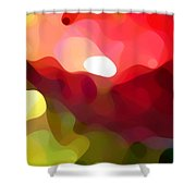 Cactus Resting Shower Curtain by Amy Vangsgard