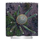 Cactus, Saguaro Long Armed Shower Curtain
