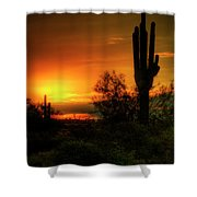 Cactus Sunrise Shower Curtain