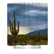 Cactus Sunset Saguaro National Park Arizona Shower Curtain
