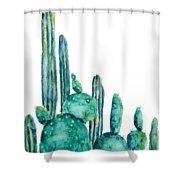 Cactus Watercolor 1 Shower Curtain