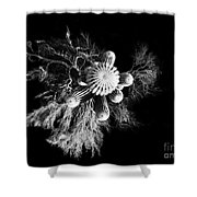 Cactus With Palo Verde Shower Curtain