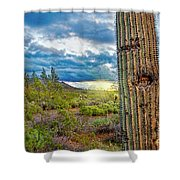 Cactus With Teeth Shower Curtain