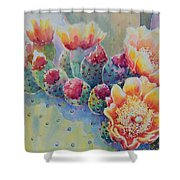 Cactus Flowers Shower Curtain