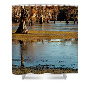 Caddo Lake 2016 Shower Curtain