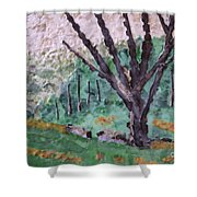 Cades Cove Meadow Shower Curtain