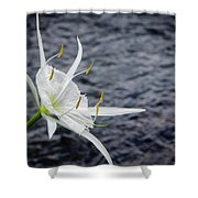 Cahaba Lily #1 Shower Curtain