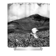 Caherconree Cotton Shower Curtain