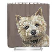 Cairn Terrier - Dave Shower Curtain