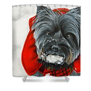 Cairn Terrier In The Snow Shower Curtain