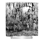 Cajuns Collecting Moss Shower Curtain