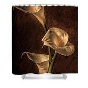 Cala Lilies Shower Curtain