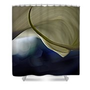 Cala Lily Curl Shower Curtain