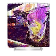 Calf Cow Maverick Farm Animal Farm  Shower Curtain