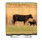 Calf Shower Curtain