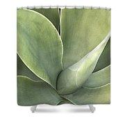 Cali Agave Shower Curtain