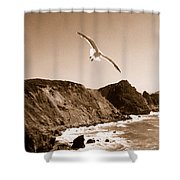 Cali Seagull Shower Curtain
