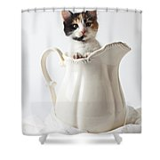 Calico Kitten In White Pitcher Shower Curtain