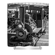 Calico Odessa Train In Black And White Shower Curtain
